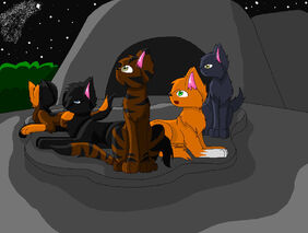 Shooting star by Warrior Cats FanFics