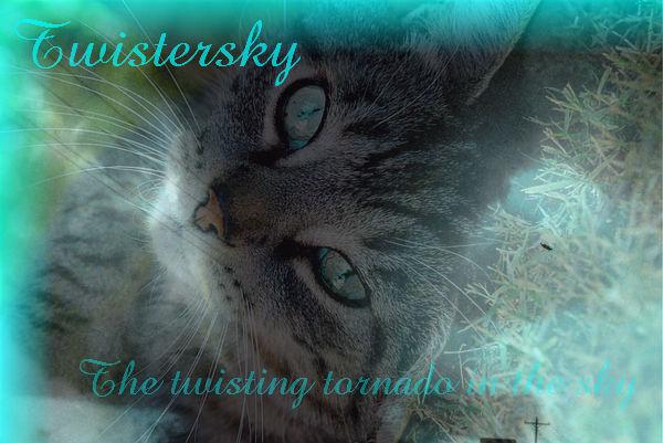 Twistersky.wallpaper
