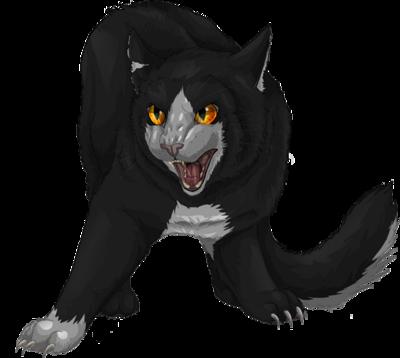 Dark forest cat wcc collab by xxmoonwish-d54ctx4