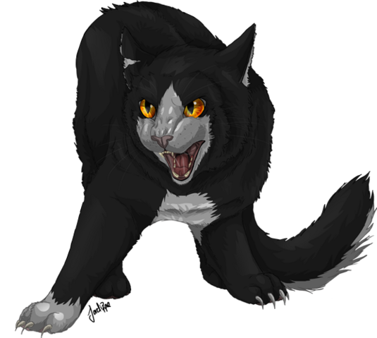 File:Dark forest cat wcc collab by xxmoonwish-d54ctx4.png