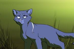 File:Bluefur doesn t approve of tigerpaw by urnam7-d5bfg2z.png.jpg