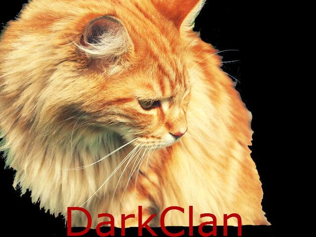 File:DarkClan.jpg