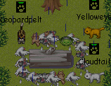 File:WolfClans Freshkill-pile in the rain.PNG