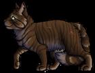 Tigerlily.BrCaM