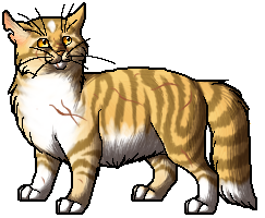 File:Finchwing.warrior.png