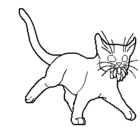 Medicine cat apprentice.short.male