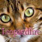 Leopardfire.personal