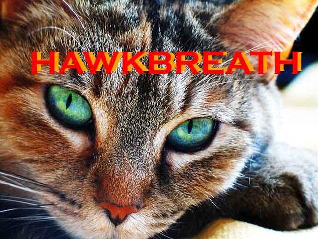 File:Hawkbreath.jpg