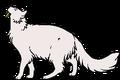Medicine Cat.lh.png