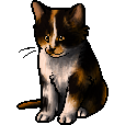Maplestar.kitten