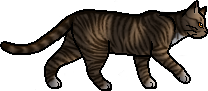 File:Leafpool.loner.png