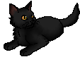 File:Willowkit (CP).star.png