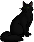 Hollyleaf.warrior