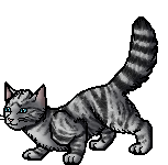 File:Feathertail.apprentice.png