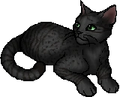 Thrushpelt (WC).star