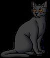 Owlstar (SotC).warrior