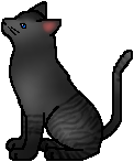 File:Rainwhisker.warrior.alt.png
