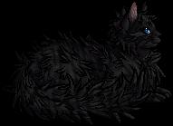 Kinkfur.elder