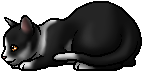 File:Swiftpaw (TPB).kit.png