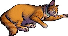 File:Bob.kittypet.png