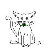 Cat-Blank-3