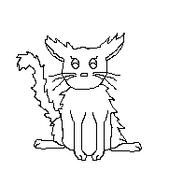 Cat-Blank-17