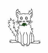 Cat-Blank-30