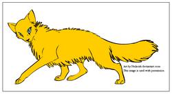 Goldenpaw