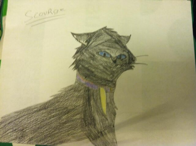 File:Scourge drawing.jpg