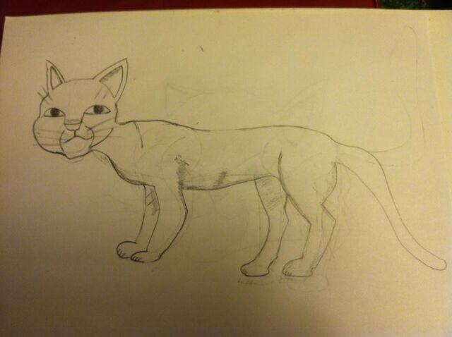 File:Cat drawing 1.jpg