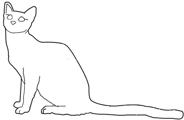 File:Leader She Cat.png