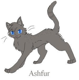 File:Ashfur.png