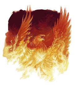 Phoenix D&D