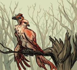 Two-Headed Bird