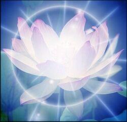 Flower medium-1-