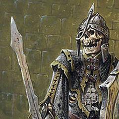 Skeleton knight?