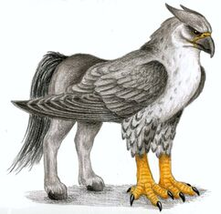 Hippogriff.