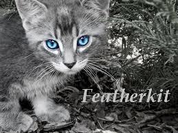 Featherkit