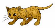 Leopardkit.K.LC