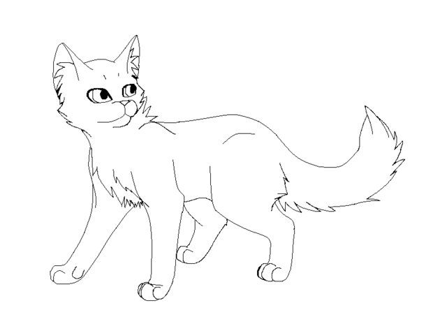 File:Cat lineart paint by stormfalconfire-d46963g.png