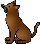 Barkface (Adventures of StarClan)