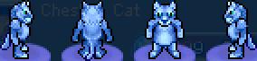 Char azure cat