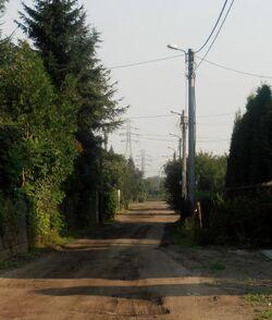 Szeroka