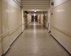 Centrum Zdrowia Dziecka (podziemia).JPG