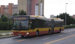 Światowida (autobus E-4).JPG