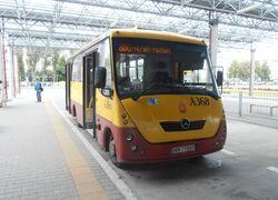 Metro Młociny (autobus 800)