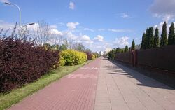 Światowida (ścieżka rowerowa).jpg
