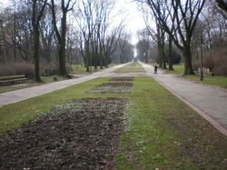 Park Skaryszewski (główna alejka).JPG