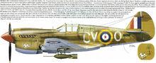 8 P40E-1 RAAF 112 squad