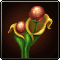 File:L3 Daru Seed.png